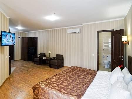 Санаторій Лісова Пісня 1-кімнатний Апартамент
