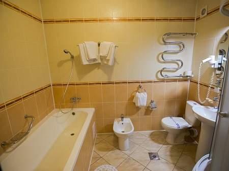 Санаторий Квитка Полонины 2-комнатный (Сузирье)