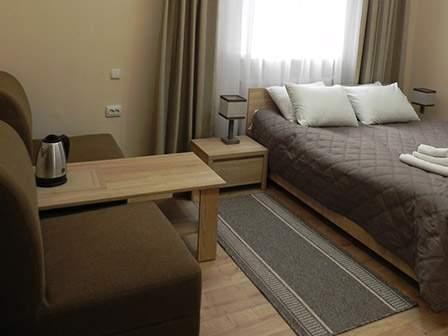 Санаторий Березовый Гай 1-комнатный Люкс