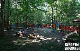 Санаторий Лесная Песня детская площадка
